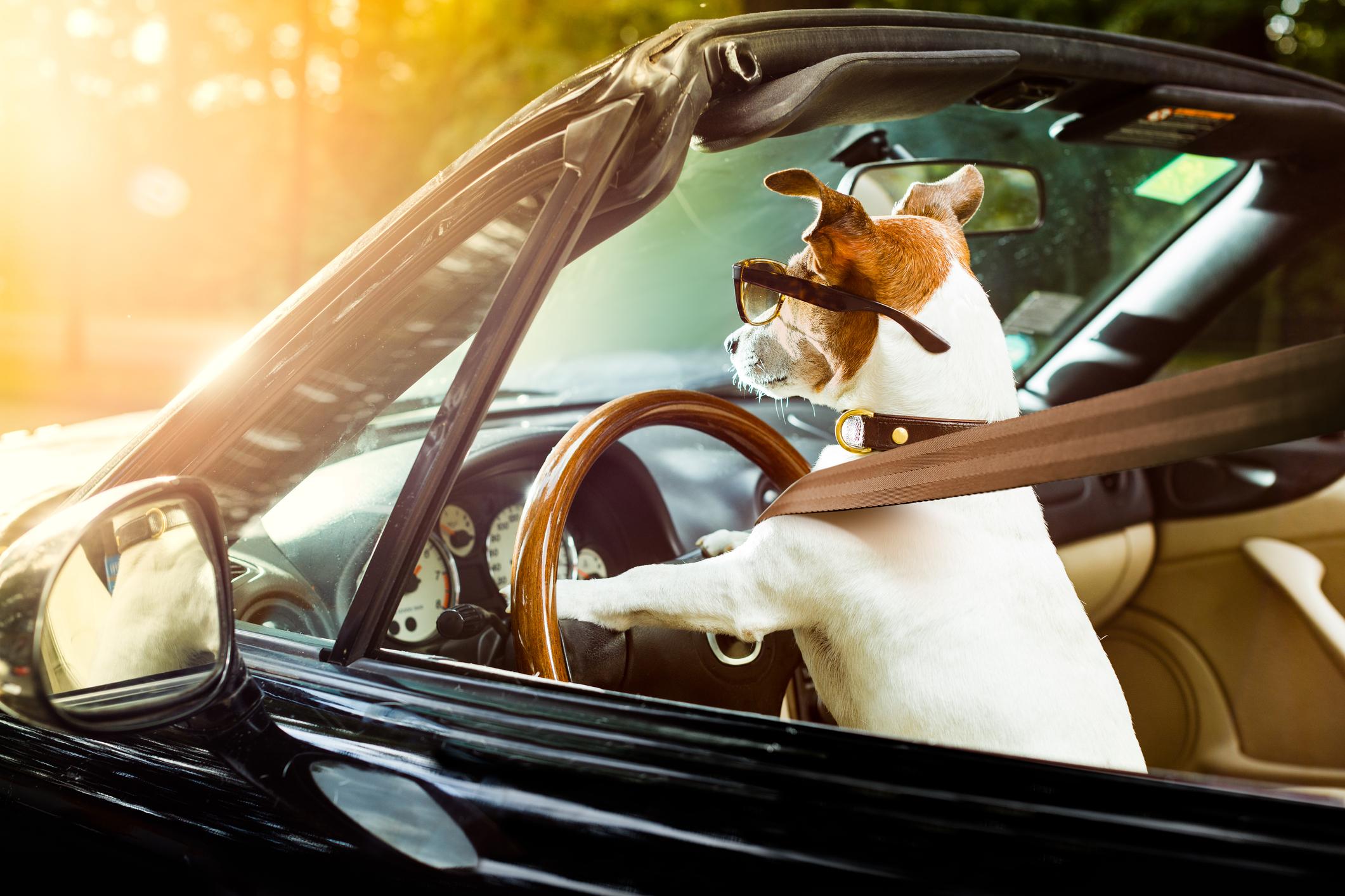 Fradrag for bruk av privatbil i enkeltpersonforetaket ditt kan spare deg for over 20 000 kroner i året