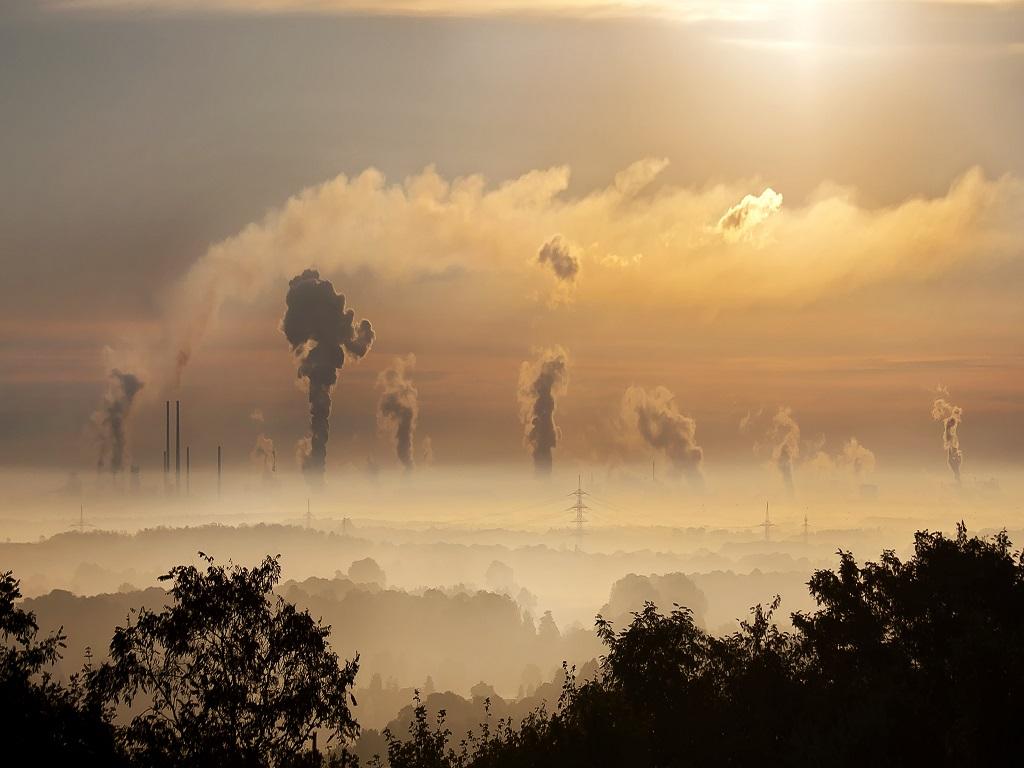 Med effektivisering kan virksomheten din bli både mer lønnsom og mer miljøvennlig.
