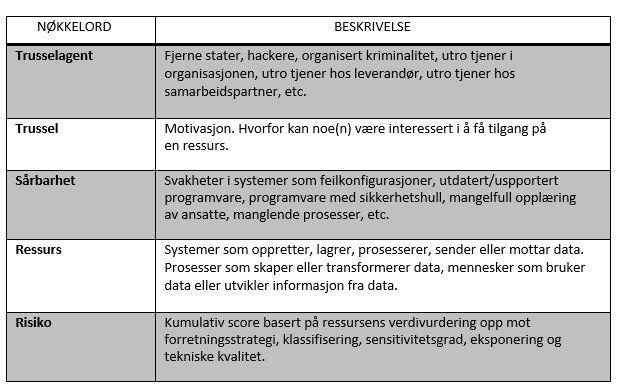 Risikoanalyserapport ordbok for felles språk