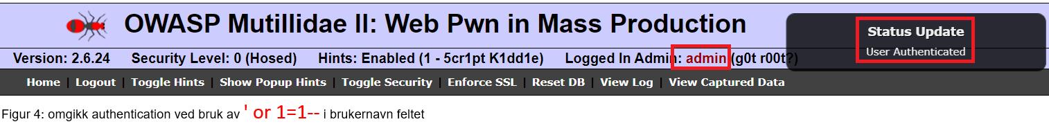 OWASP innlogging