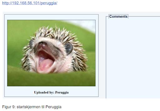 Startskjermen til Peruggia