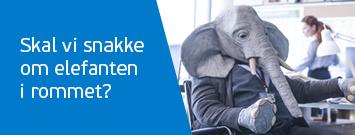 Les om elefanten i rommet